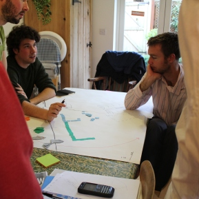 Oak tree participatory planning 7